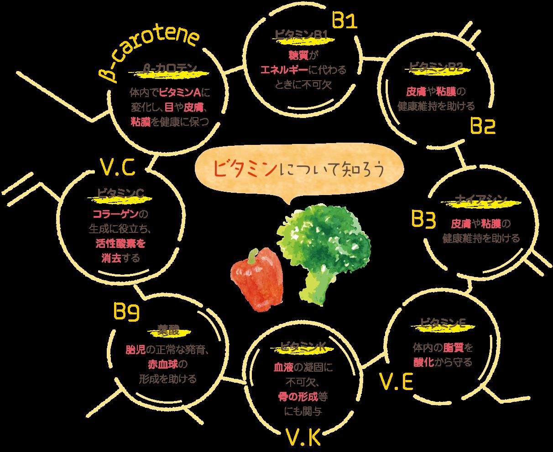 ビタミンの役割